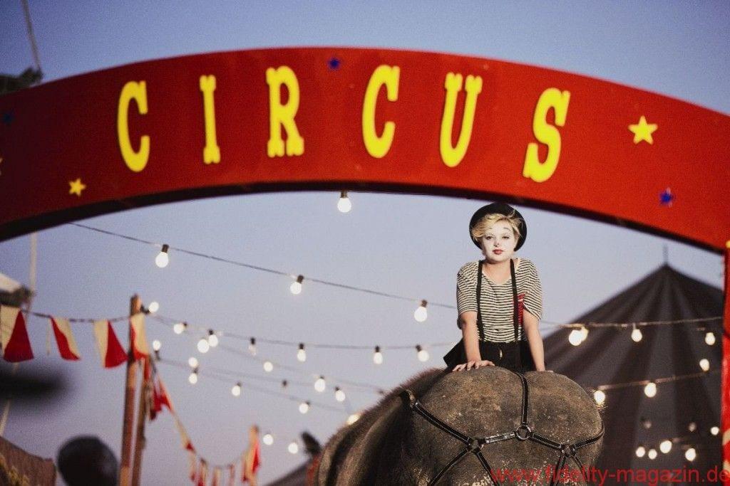 Dave Stewart Circus
