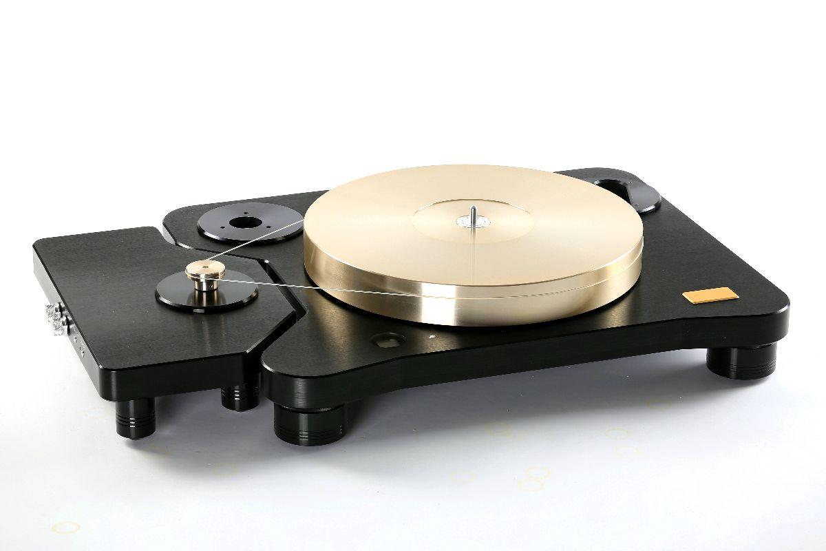 Acoustic Masterpiece T-01  4