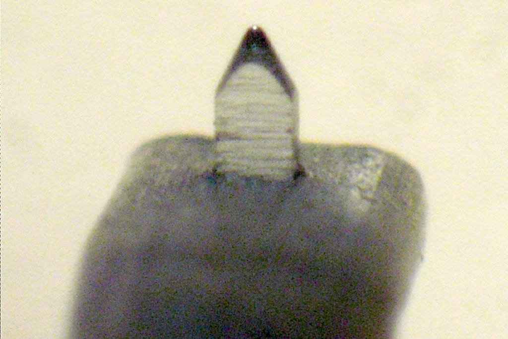 Transrotor Cantare Diamant Nadel