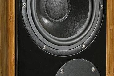 DeVore Fidelity Gibbon 88 - Man sollte die optisch eher zurückhaltende DeVore Gibbon 88 nicht unterschätzen. In der schlanken Zweiwege-Säule steckt ein affenartig guter Klang, der bereits mit kleinen Röhrenverstärkern bestens zur Geltung kommt. Die Treiber sind skandinavischen Ursprungs und mit Silberdraht verkabelt