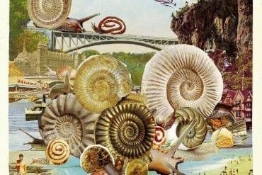 Peter Rosendal / Old Man's Kitchen – Love For Snail