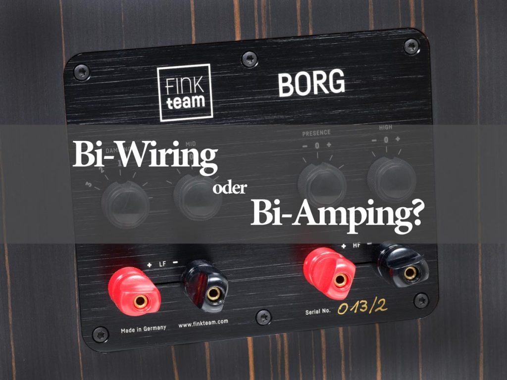 Bi-Wiring, oder Bi-Amping?