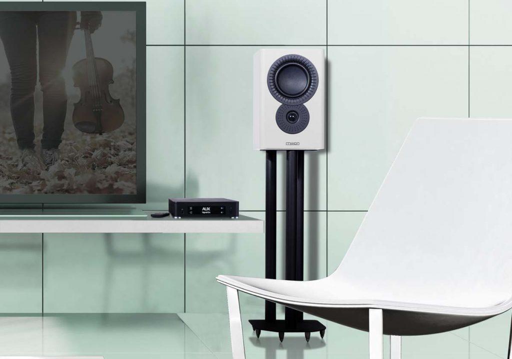 Modern TV Room