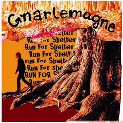 Funkadelity Gnarlemagne Run For Shelter