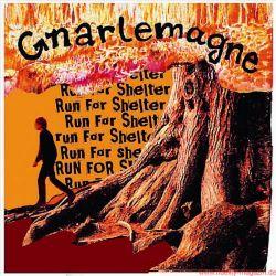 Funkadelity Gnarlemagne Run For Shelter