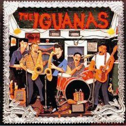 Funkadelity Iguanas