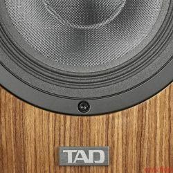 TAD-CE1
