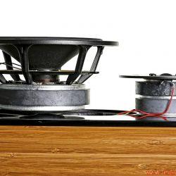 DeVore Fidelity Gibbon 88 - hochwertige Chassis mit Silberverdrahtung