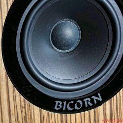 Horn-Kultur BiCorn
