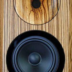 Horn-Kultur BiCorn - BiCorn: Der Breitbänder überträgt bis 9 kHz hinauf, darüber ergänzt ihn ein Druckkammertreiber