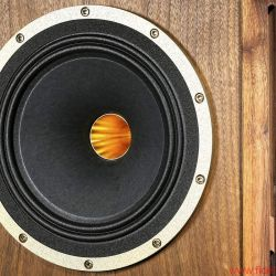 Tannoy Prestige Turnberry GR Limited Edition Alnico