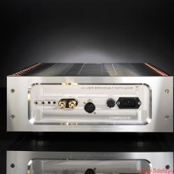 D'Agostino Momentum Amplifiers