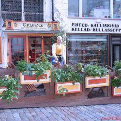 FIDELITY zu Besuch bei Audes in Estland - Tagsüber ist die Altstadt von Tallinn schon sehenswert, abends herrscht im Sommer geradezu mediterranes Flair