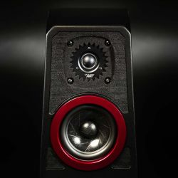 Wilson Audio TuneTot Cove Carbon