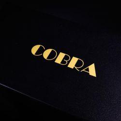 Audio Note Cobra Röhrenvollverstärker